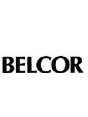 Belcor - Actuating Lever, Air Valve Z25-333 - 25-333